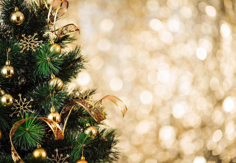aperture periodo festivo