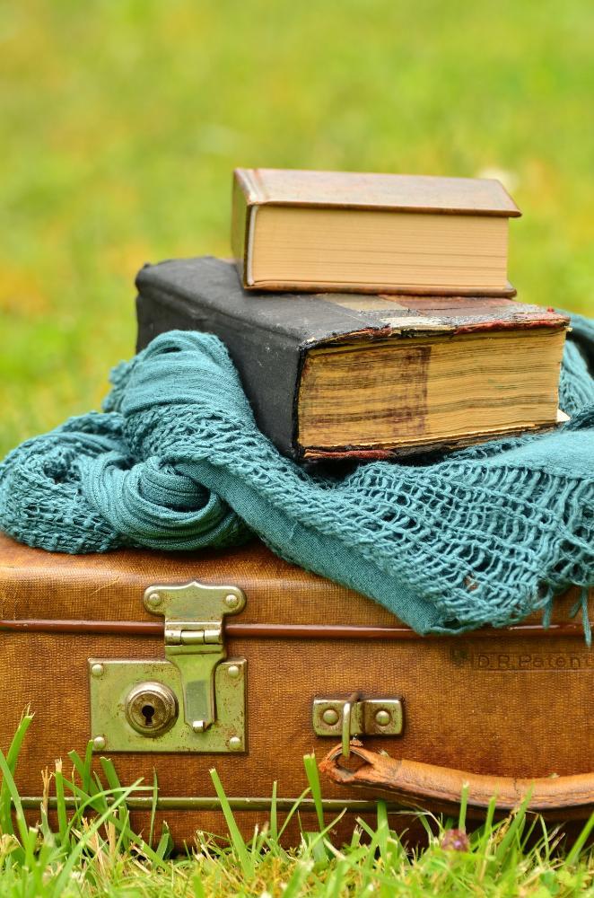 Un libro in valigia