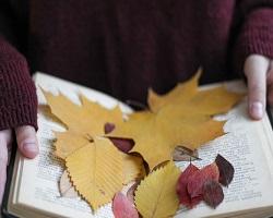 Libri da leggere in autunno