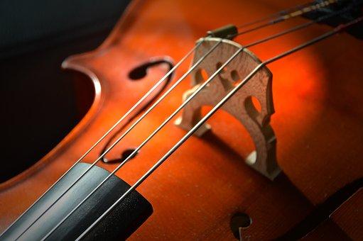 Momenti Musicali in Biblioteca