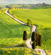 La via Francigena. Raccontare i cammini